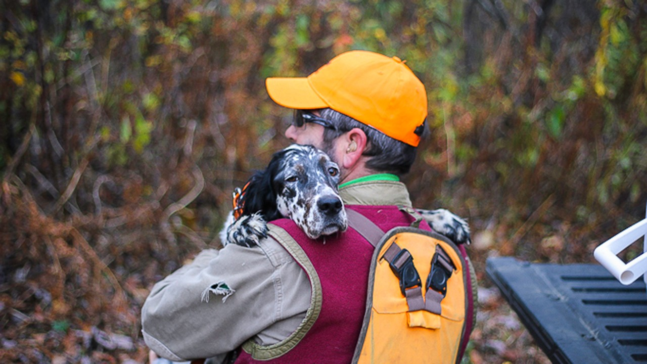 Upland Hunting at Quimby's in Vermont